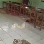 Buruknya Mutu Pendidikan SDN 1 Jermun Kabupaten OKI